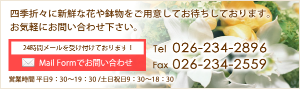 Mail Formでお問い合わせ